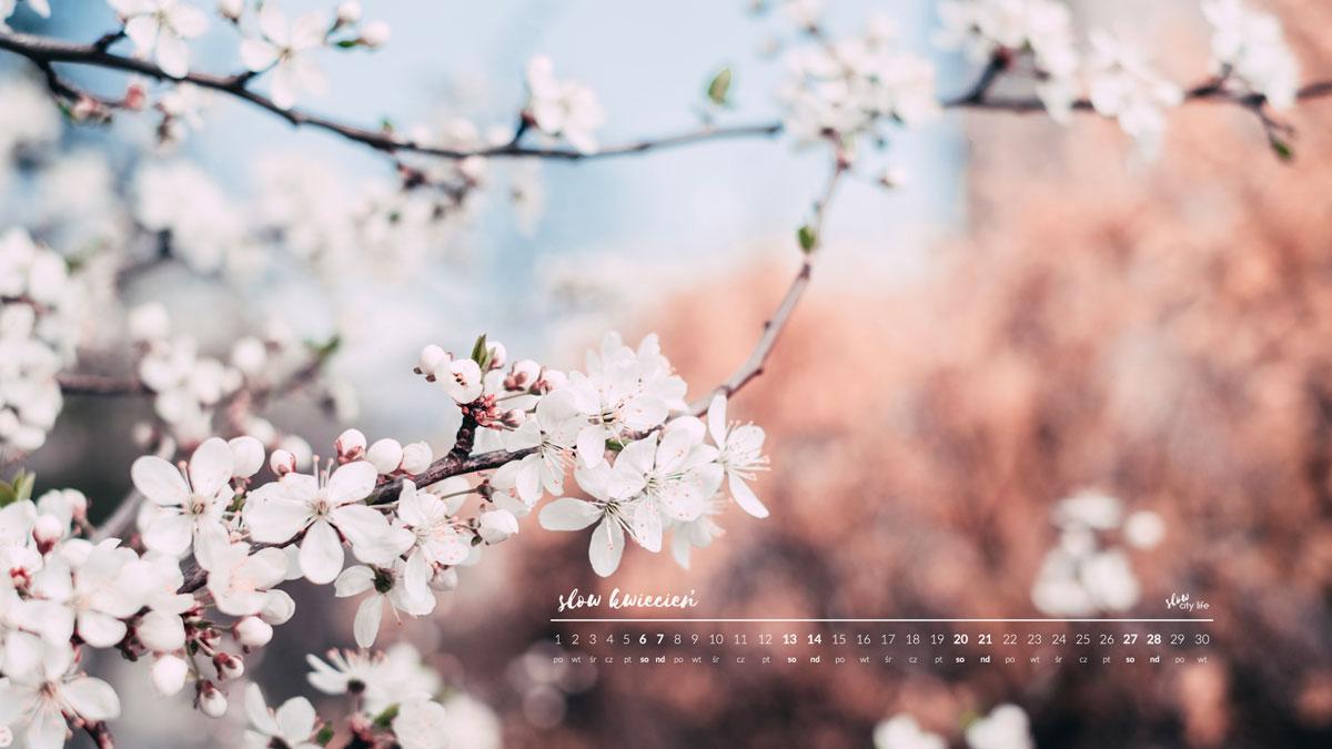 tapeta kwiecień tapeta na KWIECIEŃ